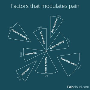 Factors that Modulate Pain